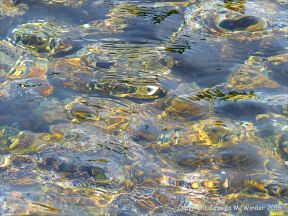 Pebbles under flowing water with small prisms of rainbow colours