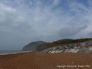 View looking west at Seatown beach, Dorset, England, showing rip-rap sea defences in foreground