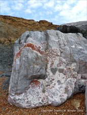 Natural pattern in a rip-rap boulder at Seatown, Dorset, England.