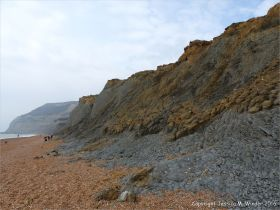 Cliffs of soft eroding Jurassic strata on the west side of Seatown in Dorset, England.