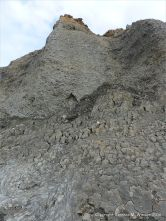 Cliff of eroding Jurassic Lower Lias Green Ammonite Member at Seatown in Dorset, England.