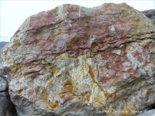 Natural pattern and texture in a rip-rap boulder at Seatown, Dorset, England.