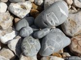 Beach stones with patterns of white calcite veins