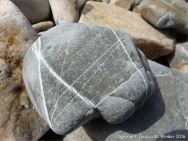 Natural pattern of white calcite veins in a beach stone