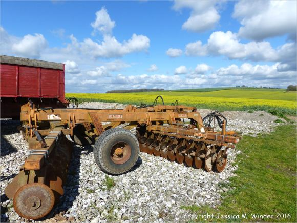 Agricultural machinery and field of flowering oilseed rape crop