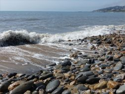Beach stones on the water's edge at Charmouth.