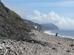 Charmouth beach where there are many stones with holes made by sea creatures. View looking east.