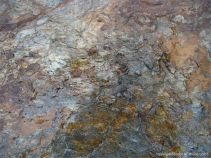 Metamorphic rock textures and colours on the Cabot Trail