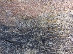 Detail of pitted texture in Bluestone Formation rock in Galifax, Nova Scotia