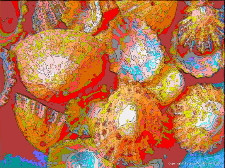 Brightly coloured picture of limpet shells