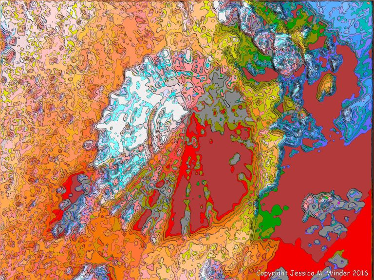 Brightly coloured picture of a limpet shell