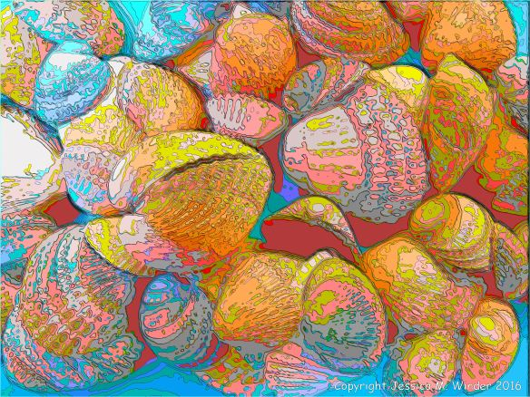 Brightly coloured picture of cockle shells