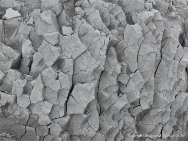 Close-up of pattern and texture in a beach boulders at Charmouth on the World Heritage Jurassic Coast in Dorset, England.