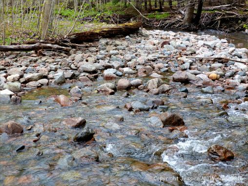 Water texture, colour and pattern in a fast flowing mountain stream