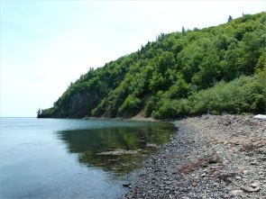 East side of Partridge Island