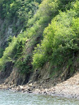 Columnar basalt on the east side of Partridge Island