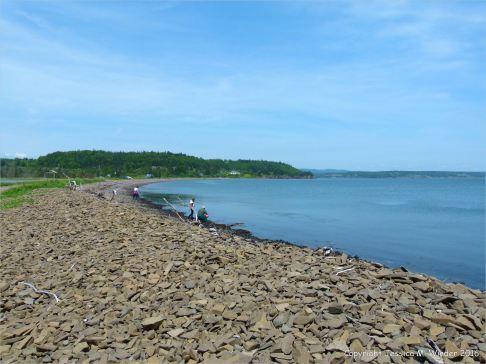 Looking east towards Parrsboro along the pebble beach from Partridge Island