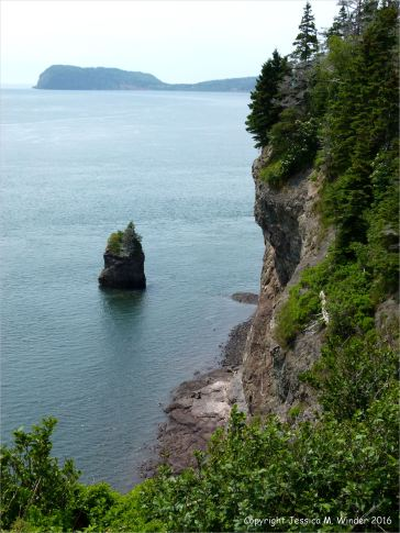 View of a sea stack and Cape Sharp from the top of Partridge Island
