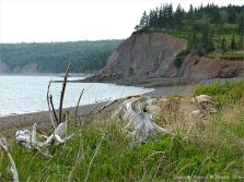 View of the cliffs on the east side of west Bay near Partridge Island
