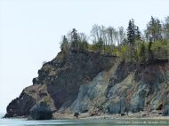 Context shot of Clarke Head, Nova Scotia, Canada, where the photographs of satin spar gypsum veins were taken