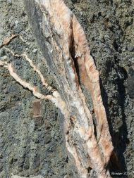 Crystal veins of satin spar gypsum in fault zone rocks