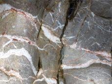 Water-worn limestone with white calcite veins on the Worms Head Causeway in Gower, South Wales.