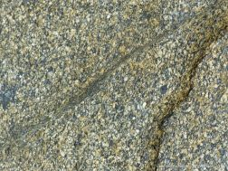 Detail of rock texture from an outcrop on the beach at Rocquaine Bay
