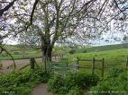 Rural view with stile in spring on the Cerne Valley Trail, Dorset, England.
