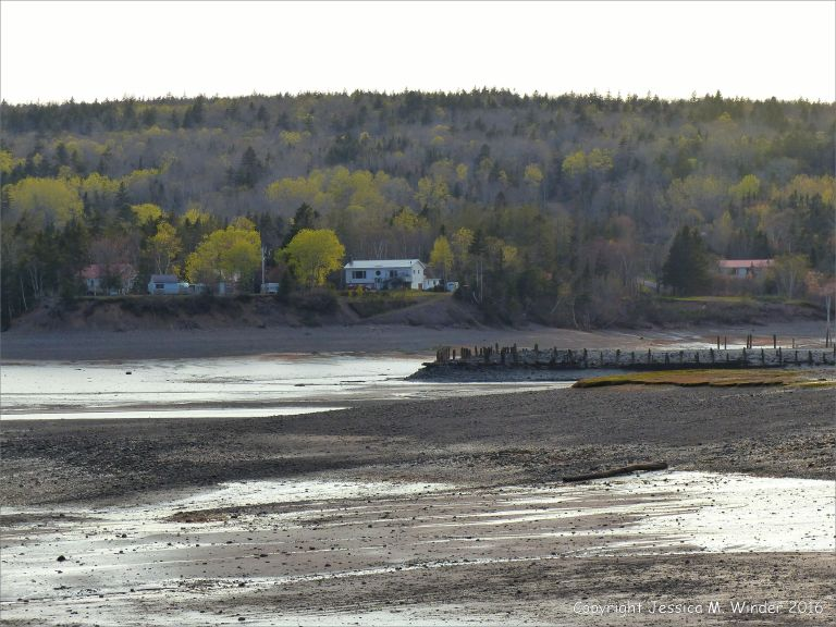 Beachscape with evening light reflected on mud at Parrsboro, Nova Scotia, Canada.