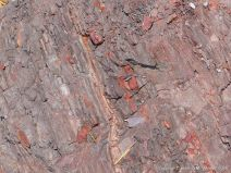 Carboniferous red beds at Wasson Bluff