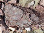 Triassic-Jurassic Blomidon Formation rock at Wasson Bluff