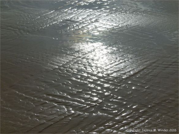 Sand patterns at low tide on the beach