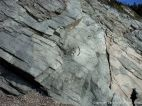 Pale gleaming phyllite rock face on the Cabot Trail in Cape Breton Island