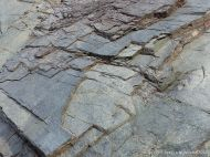 Phyllite rock face showing bedding planes or cleavage surfaces on the Cabot Trail in Cape Breton Island