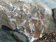 Phyllite rock with veining on the Cabot Trail in Cape Breton Island