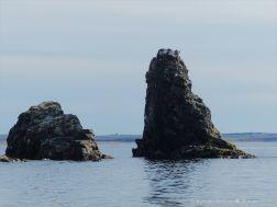 Basalt sea stack called Pillar Rock on Cape Breton Island