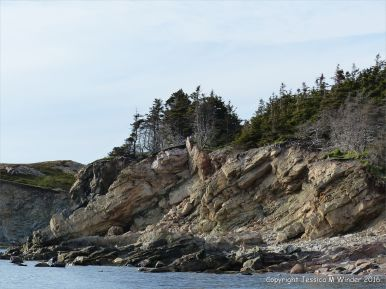 Carboniferous sandstone cliff strata at Presqu'ile on Cape Breton Island