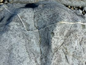 Close-up of St Peter Port Gabbro at Spur Bay on the Channel Island of Guernsey