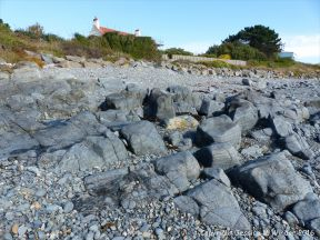 Outcrops of St Peter Port Gabbro on the shore at Spur Bay in the Channel Island of Guernsey