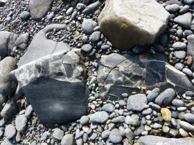 Outcrop of St Peter Port Gabbro with veins containing rock fragments at Spur Bay in the Channel Island of Guernsey