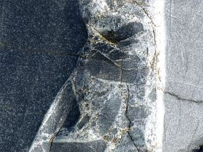 Close up of a vein containing rock fragments on Hornblende gabbro of the St Peter Port type