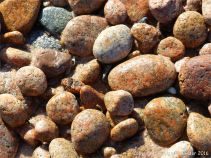 Cobo Granite pebbles on the southwest end of Cobo Bay