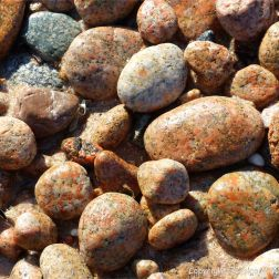 Cobo Granite pebbles on the southwest end of Cobo Bay