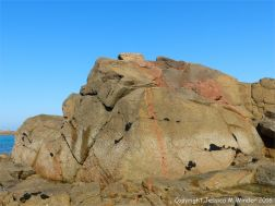 Cobo Granite outcrop with aplite veins