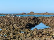Low tide rocks at Cobo Bay