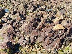 Rocky outcrops at low tide in Cobo Bay