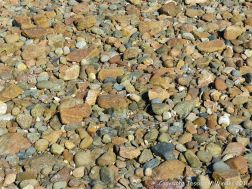 Angular stone fragments of contrasting colours on the shore at Cobo Bay