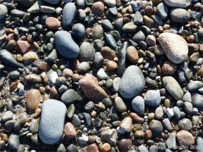 Mixed diorite and granite pebbles at the northeast end of Cobo Bay