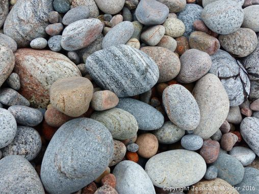 Dry pebbles on the beach at Pleasant Bay, NS