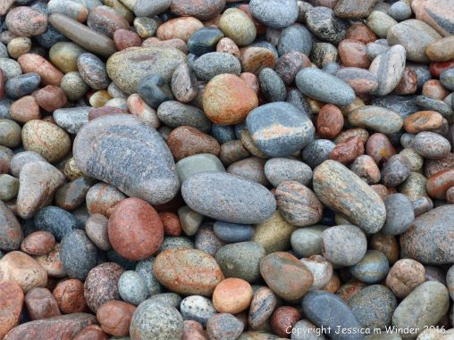Wet pebbles at the water's edge at Pleasant Bay in Cape Breton Island
